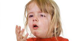 Течение коклюша и его симптомы