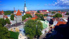 Сколько стоит виза в Эстонию и как быстро её сделать