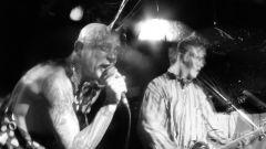 Что такое американский панк-рок