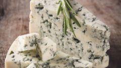 Виды сыров с плесенью