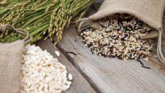 Очищение организма – залог эффективного похудения