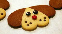 Как приготовить печенье для собак с медом и курагой?