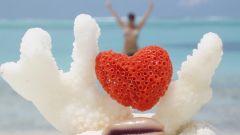 Что дарят на коралловую свадьбу