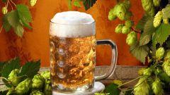 Как сварить хорошее пиво в домашних условиях