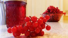 Как употребляют ягоды калины
