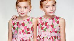 В чем разница между двойняшками и близнецами