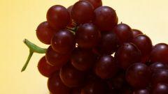 Как получить свежий сок винограда