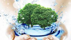 Откуда на земле появилась вода