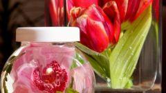 Как законсервировать цветы в глицерине