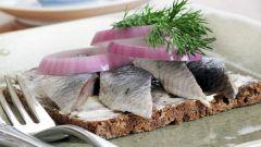 Как приготовить острые бутерброды с сельдью, зеленью и сыром
