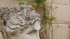 Как выглядит римский нос