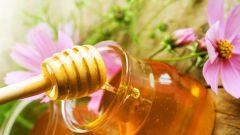 Польза меда при разных болезнях