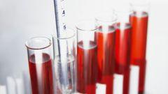 Как подготовиться к забору крови на анализ