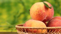 Польза абрикосов для кожи. Часть 1