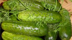 Freshly-salted cucumbers in a quick way