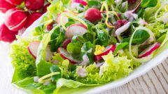 Легкий салат с редиской