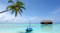 Отдых на Мальдивах - какой он?