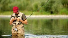 Как правильно удить рыбу
