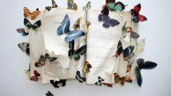 В чем суть эффекта бабочки