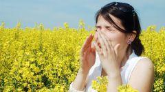 Как выбрать таблетки от аллергии