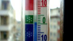 Что характеризует температура тела