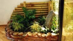 Советы по обустройству зимнего сада