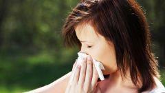 Аллергия на растения: как лечить?