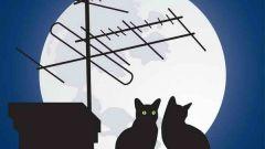 Как усилить антенный сигнал