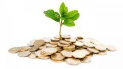Прямые и портфельные инвестиции: в чем отличия?