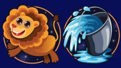 Совместимы ли женщина-лев и мужчина-водолей?