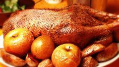 Рецепты горячих блюд для особого случая