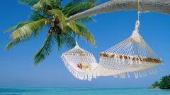 Отдыхаем круглый год: море и солнце в любое время года