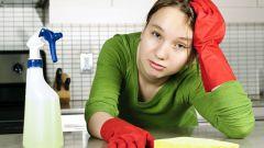 Как выбрать эффективное средство от тараканов