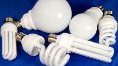 Энергосберегающие и люминесцентные лампы: в чем разница?