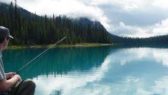 Рыбалка в Астрахани: советы опытных рыбаков