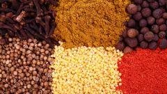 Как выбрать специи для домашних блюд