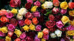 Как стать флористом