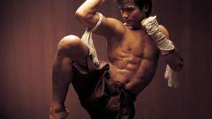 Основы тайского бокса