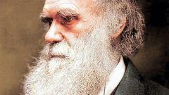 Открытия Чарльза Дарвина
