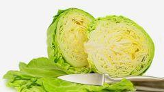 Работает ли капустная диета
