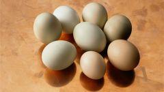 Почему куриные яйца разного цвета