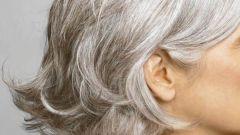 К чему снятся седые волосы на голове