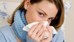Опасен ли насморк во время беременности