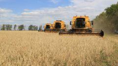 Что такое зона рискованного земледелия
