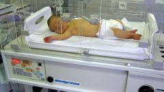 Как растить недоношенного ребенка
