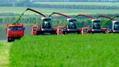 Основные проблемы сельского хозяйства в России
