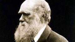 Значение теории Дарвина для человечества