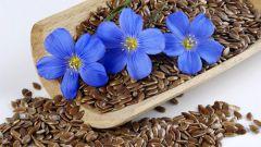 От чего помогает отвар семени льна
