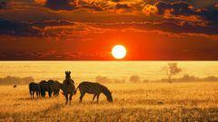 Почему в Африке жарко