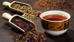 Индийские сорта чая: выбираем лучший